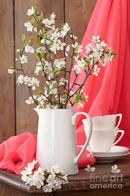 White China Cup Photograph - Spring Still Life by Amanda Elwell