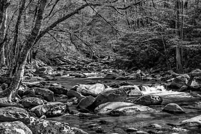 Photograph - Spring Stream Bw by Jim Dollar