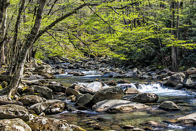 Photograph - Spring Stream by Jim Dollar