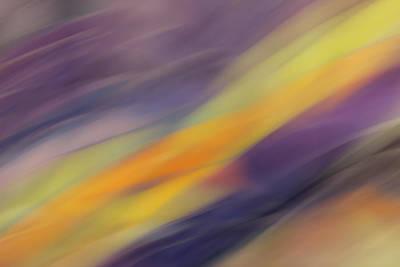 Amy Weiss - Spring Stream by Rachel Cohen
