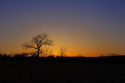Spring Sunset Pops Through Trees Art Print by Ed Cilley