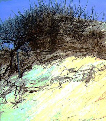 Spring Time Dune Horseneck Beach Original