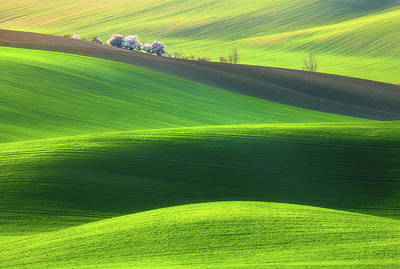 Agriculture Photograph - Spring Time... by Krzysztof Browko