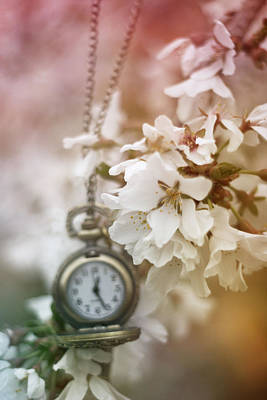 Photograph - Spring Time by Stephanie Hollingsworth