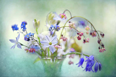 Bouquet Photograph - Spring Treasures by Jacky Parker