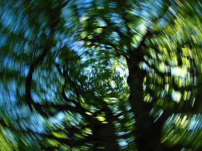 Abstract Movement Photograph - Spring Tree Carousel by Juergen Roth