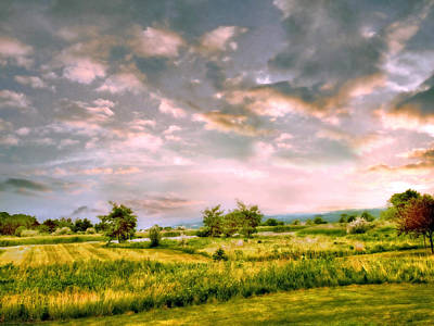 Field Digital Art - Spring Valley by Jessica Jenney
