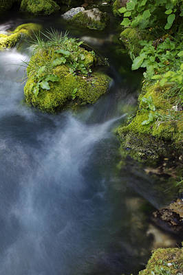 Photograph - Spring Water by Byron Jorjorian