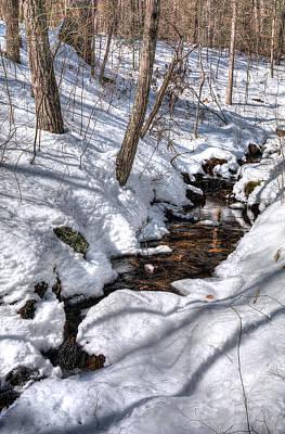Lara Virginia Photograph - Spring Water by Lara Ellis