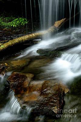 Monongahela National Forest Photograph - Spring Waterfall Monongahela National Forest by Thomas R Fletcher