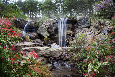 Photograph - Spring Waterfall by Robert Camp