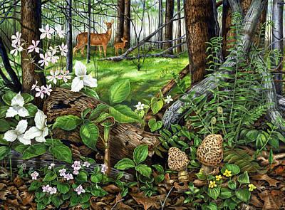 Spring Woodland Original