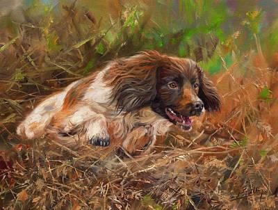Springer Spaniel Painting - Springer Spaniel 2 by David Stribbling