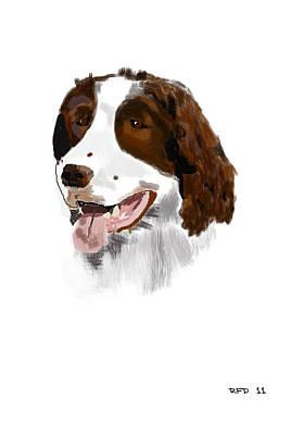 Raiser Digital Art - Springer Spaniel by Bob Donner