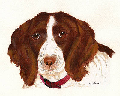 Art Print featuring the painting Springer Spaniel  by Nan Wright