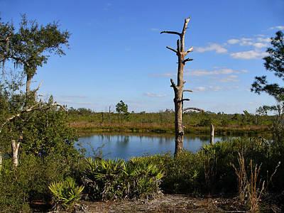Photograph - Springfed Lake. Catfish Creek Preserve.  by Chris  Kusik