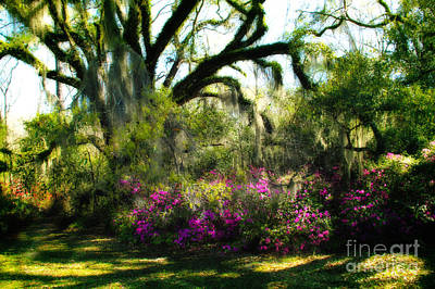 Photograph - Springtime At Afton Villa by Judi Bagwell