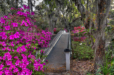 Photograph - Springtime At Magnolia Plantation 11 by Walt  Baker