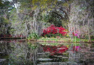 Photograph - Springtime At Magnolia Plantation 15 by Walt  Baker