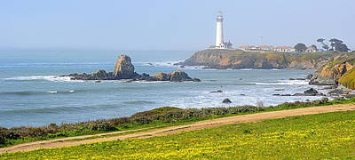 Photograph - Springtime At Pigeon Point by AJ  Schibig