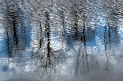 Photograph - Springtime Beaver Pond Reflections 2 In Gatineau Park Quebec. by Rob Huntley
