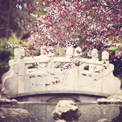 Photograph - Springtime Bridge by Melanie Alexandra Price