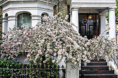 Digital Art - Springtime In London by Carrie OBrien Sibley