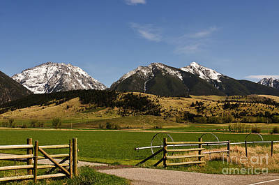 Photograph - Springtime In Montana by Sue Smith