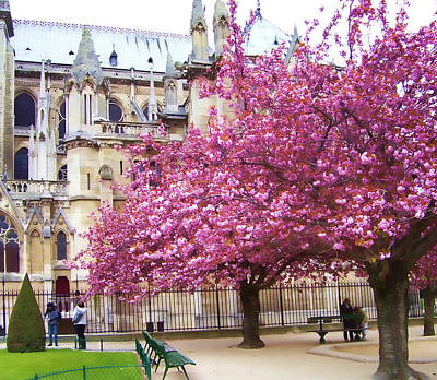 Photograph - Springtime In Paris by Christiane Kingsley