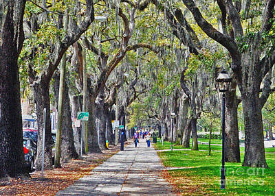 Springtime In Savannah Art Print