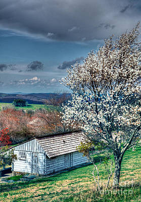 Springtime In The Blue Ridge Mountains I Art Print by Dan Carmichael