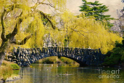Photograph - Springtime In Victoria by Marilyn Wilson