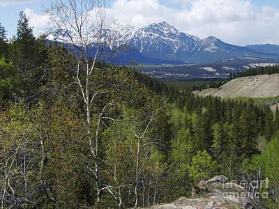 Photograph - Springtime - Jasper - Canada by Phil Banks