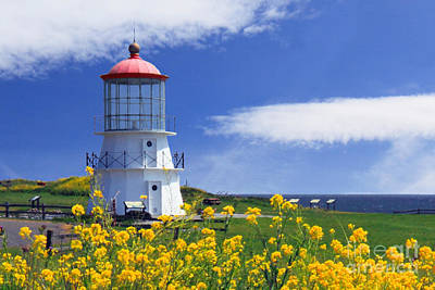 Photograph - Springtime Lighthouse by James Eddy
