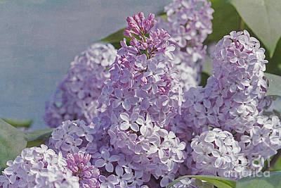 Springtime Lilacs Art Print