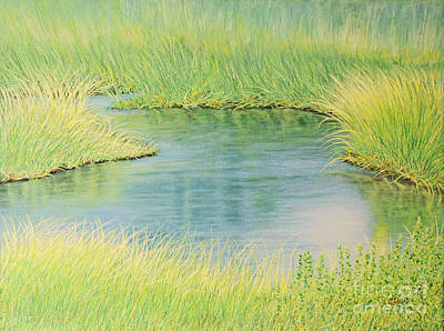 Springtime Marsh-new Beginnings Art Print by Cindy Lee Longhini