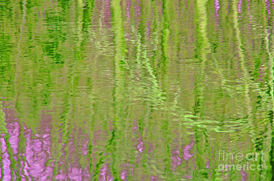 Photograph - Springtime Reflections by Cindy Lee Longhini