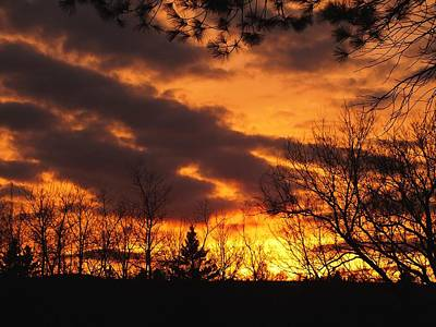 Photograph - Springtime Sunset by Gene Cyr