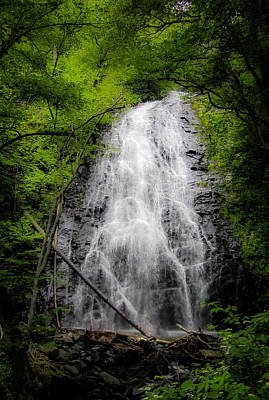Photograph - Springtime Waterfall by Dave Hall