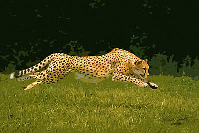 Cheetah Digital Art - Sprinter by Michael Pancito