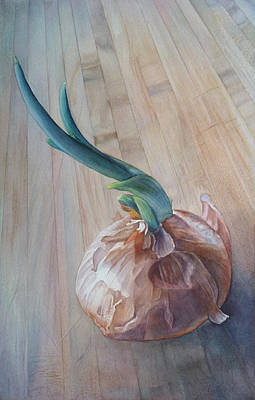 Root Painting - Sprouting Onion by Sandy  Haight