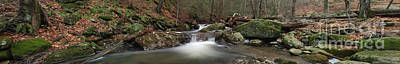 Pucker Up - Spruce Brook Falls  by Frank Piercy