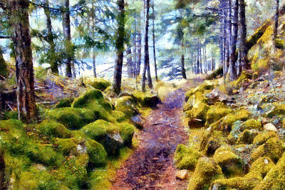 Olympic National Park Digital Art - Spruce Railroad Trail by Kaylee Mason