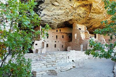 Mesa Verde Photograph - Spruce Tree House by Michael Szoenyi