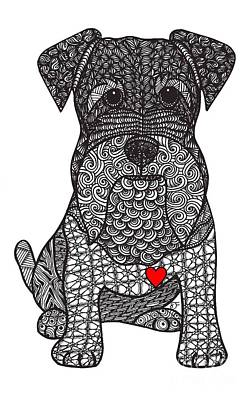 Drawing - Spunk - Schnauzer by Dianne Ferrer