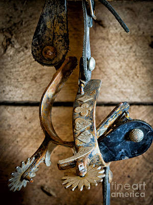 Tack Photograph - Spurs On Wall by Inge Johnsson