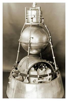 Sputnik 2 Art Print by Detlev Van Ravenswaay