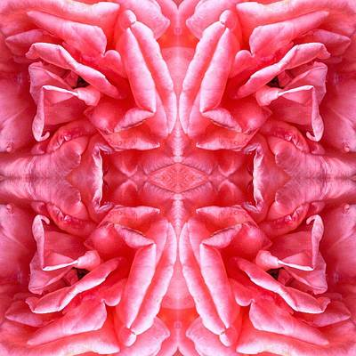 Photograph - Square Petals Abstract Art Photo by Marianne Dow