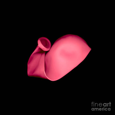 Photograph - Square Pink Balloon by Julian Cook