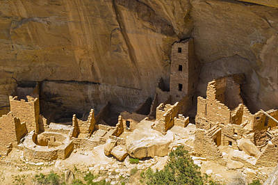 Photograph - Square Tower House At Mesa Verde by Gene Norris